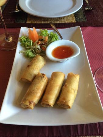Si Siam Thai Restaurant: Spring rolls