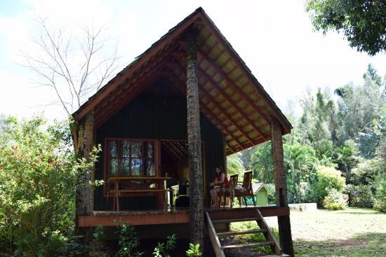 Atiu, Islas Cook: back deck overlooking the garden