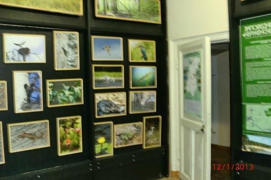 Bor Local Lore Museum