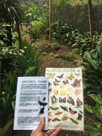 Spirogyra Butterfly Garden : Manuals in English