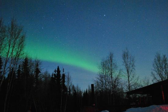 Northern Alaska Tour Company : The Aurora we saw
