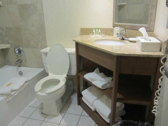 Holiday Inn Athens-University Area: Bathroom was small, but I loved the shelves - lots of room to store your stuff