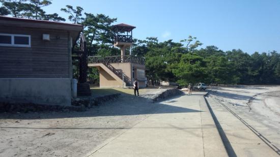 Akune Oshima