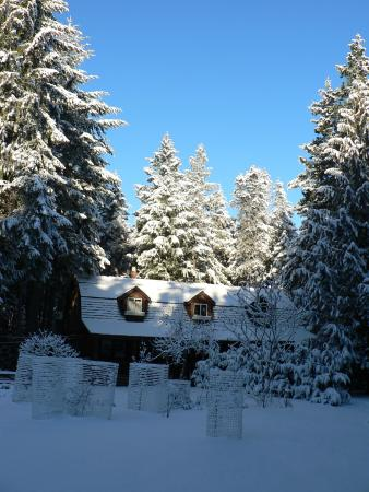 Cedar Song B&B and Cottage: Rarely it snows..