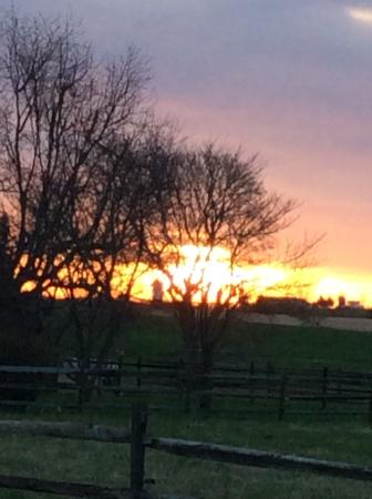 Orchard Inn: Sunrise
