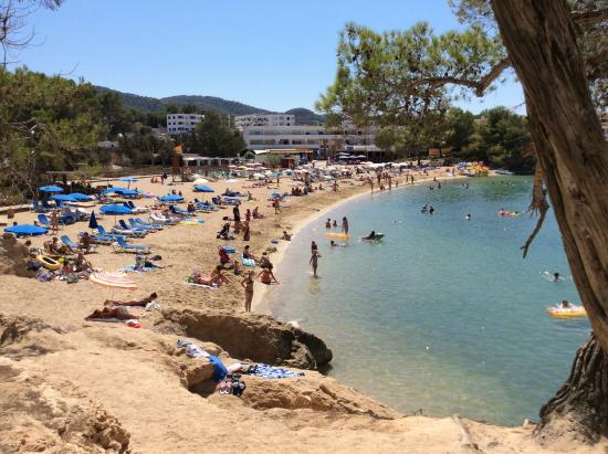 Port d'es Torrent, Spain: Beach
