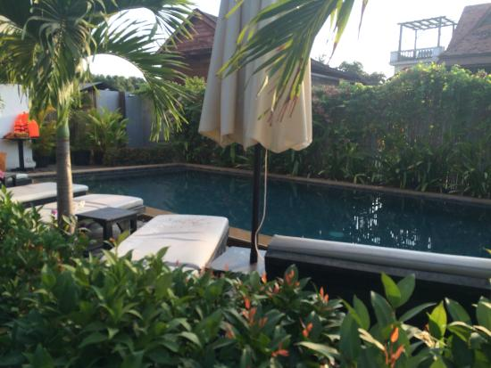 Baby Elephant Boutique Hotel: the pool from the entrance