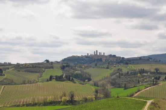 ‪Tuscany in One Day Sightseeing Tour‬