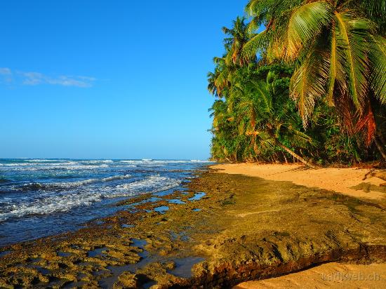 Cabinas Yamann: Strand im Refugio