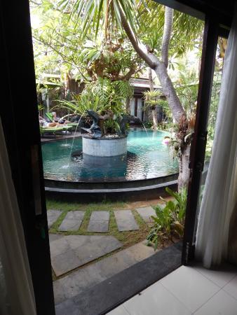 Rumah Santai Villas: Pool from bedroom