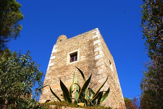 Torre da Medronheira