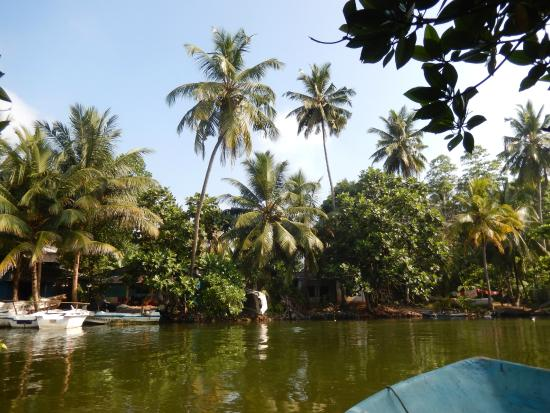 Select Sri Lanka Day Tours: River Cruise