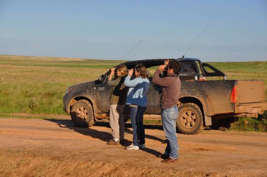 Gobernador Virasoro, Argentina: Avistaje en los pastizales