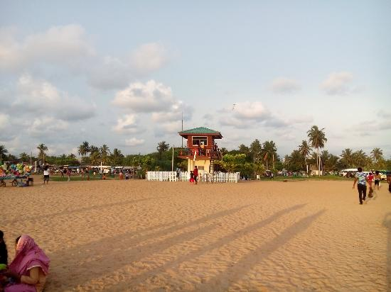 Panadura Beach All You Need To Know Before You Go With