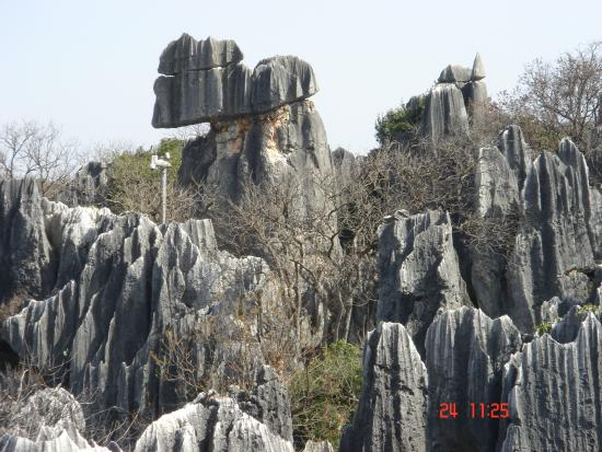 Kunming West Hill (Xishan Forest Park)