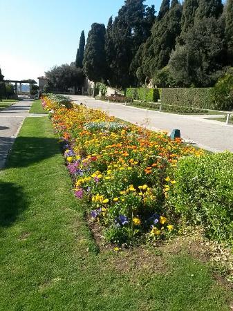 Le jardin de cimiez picture of jardin du monastere de for Jardin nice