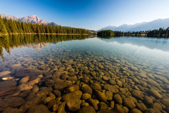 Alberta, Canada: Shared by Jeff Bartlett at Lac Beauvert, Jasper National Park