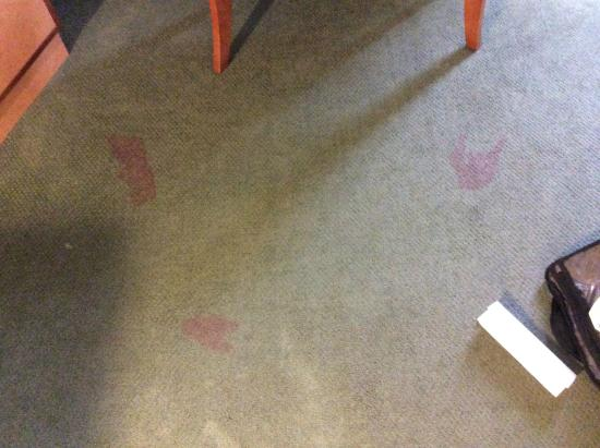 Extended Stay America - San Antonio - Colonnade: Bloody foot prints in front of the TV?