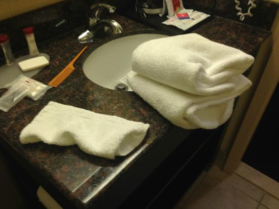 Ramada Newburgh/West Point: Two Towels and One washcloth - Believe your eyes; this is real!