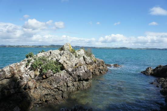 Flagstaff Hill: Waihi Beach Rock