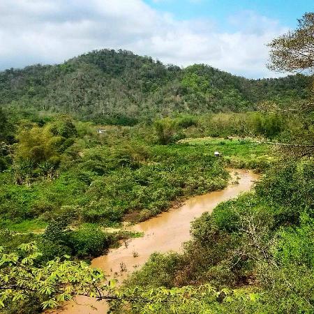 La Buena Vida Hotel- Ayampe: Ayampe jungle and river