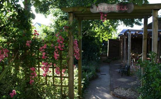 The Garden Cafe: The Beautiful Garden