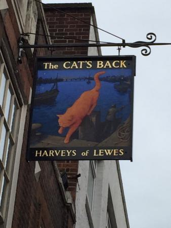 The Cat's Back : Sign Outside