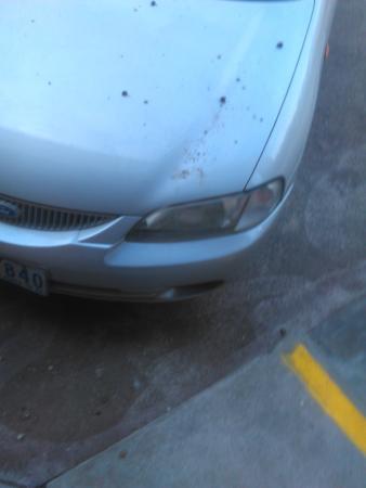Comfort Inn Main Lead: Dirt, Moss as well as Pebbles all over my car [April 2015]
