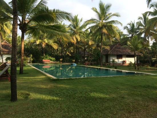 Kanan Beach Resort: Blue pool among the lush greenery
