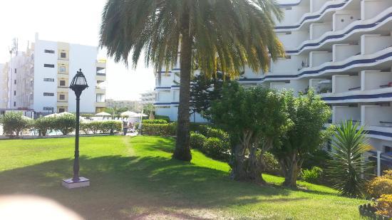 Tamaran Apartments: giardino