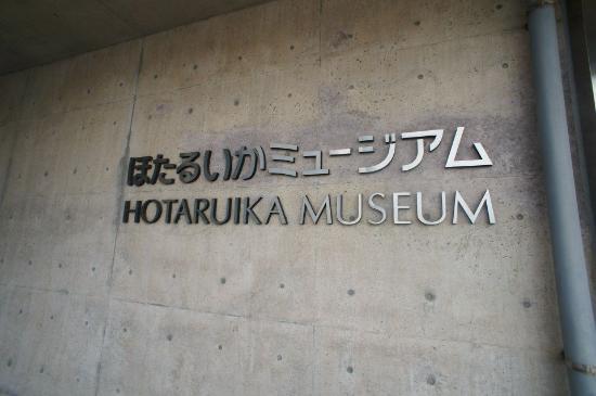 Firefly Squid Museum: 入口