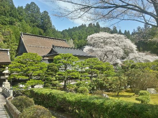 Mount Koya - Picture of Mount Koyasan, Koya-cho - TripAdvisor