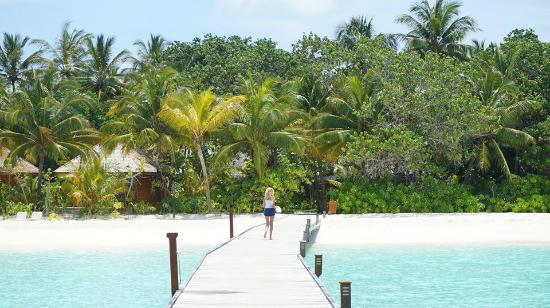 Veligandu Island Resort & Spa: Jetty from the west water villas to the island