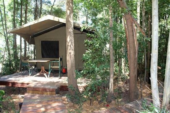Tri Active's Kunguru Lodge: Forest Walk, Family tent, en suite