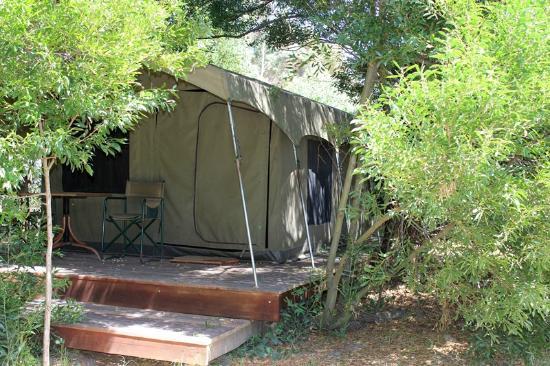 Tri Active's Kunguru Lodge: Safari Tent, Forest Walk