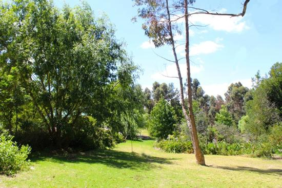 Tri Active's Kunguru Lodge: Gardens