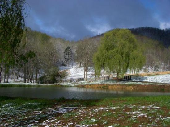 Picture of walnut hollow ranch hayesville for Db ranch
