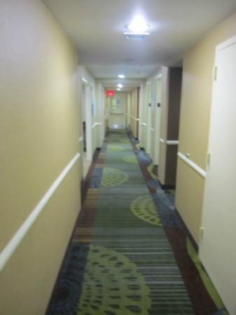 Hall - Picture of Holiday Inn Express New York City - Chelsea, New ...