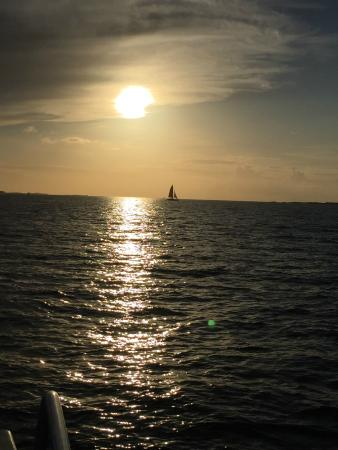 Seahorse Sailing: sunset with a sail boat