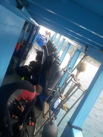 Crystal Dive Resort: first dive