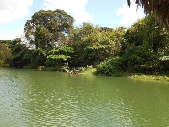 Bayahíbe, República Dominicana: Uitzicht vanaf de boot