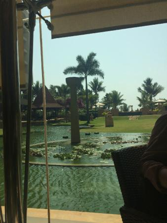 Lotus Cafe: running water and the sight of the swimming pool beyond