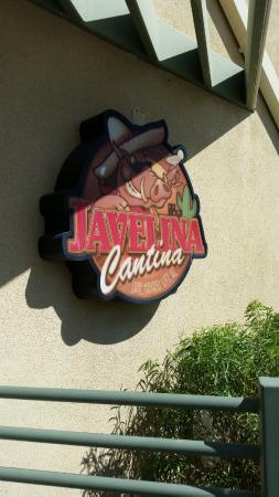 Javelina Cantina : Sign