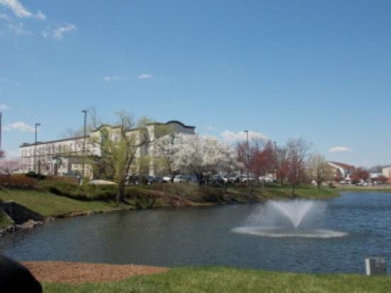 Wingate by Wyndham Chantilly / Dulles Airport: hotel from pond area