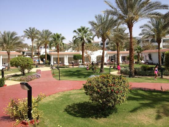 Sharm Dreams Resort: Hotel Garden