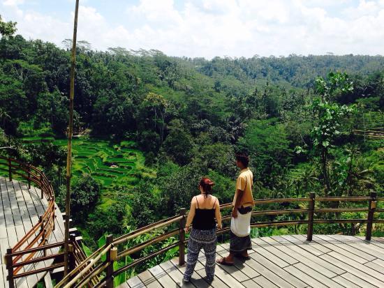 Photo of Farm Bali Pulina Agro Tourism at Gianyar, Indonesia