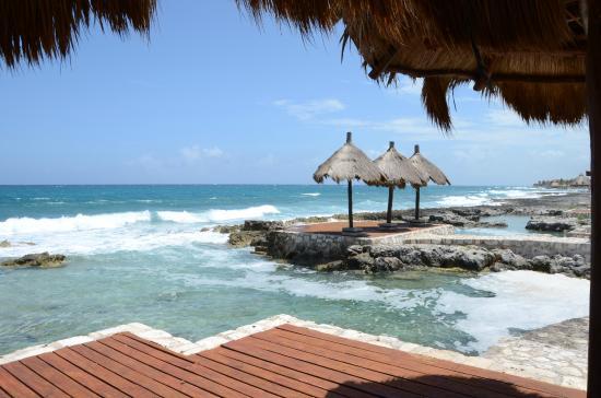 Coral Maya: A unos pasos
