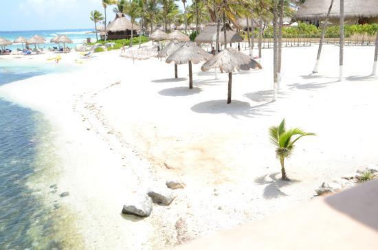Coral Maya: Club de Playa