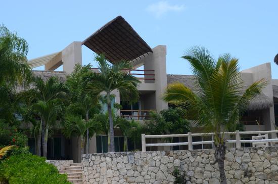 Coral Maya