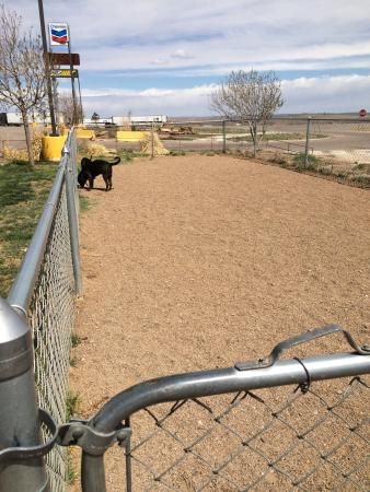 San Jon, Nuevo Mexico: Small fenced dog run